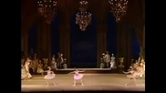 The Sleeping Beauty Kirov/marinsky Ballet 25