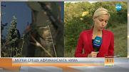МЕРКИ СРЕЩУ АФРИКАНСКАТА ЧУМА: Промени в закона за лова
