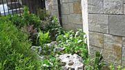 Това е нашият принос за #абитуриентските балове, възстановихме #градината за празника.