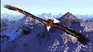 Karu Manta - Flying Condor