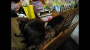 Рожден ден на Любчо - 07.03.2009
