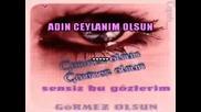 Turkish Karaoke Gormez Olsun Bizim Sarkimi