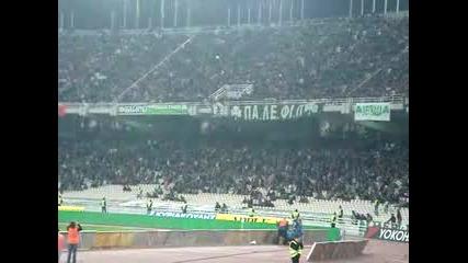 - Цял Стадион Пее Horto Magico