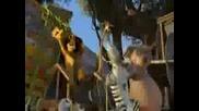 Trailer (2009) Madagaskar 2