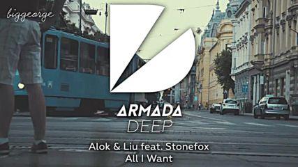 Alok And Liu ft. Stonefox - All I Want