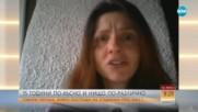 Пострадалата от бомбичка през 2003-а: В България нямам бъдеще