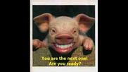 *мега Владето - Свински грип ( Ивана - Като на 17 пародия )