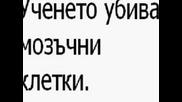 Яка Песен За Тъпото Даскало =] + Текст