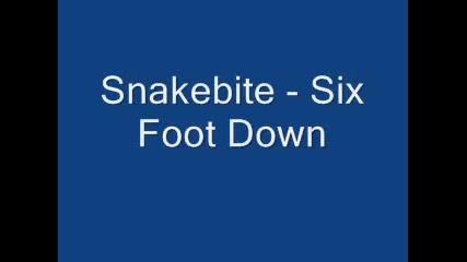 Snakebite - Six Foot Down