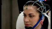 Албум Наука 2.0. Човешкият фактор - Мозъкът