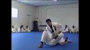 Brazilian Jiu - Jitsu