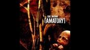 [ Amatory ] - Не Доживаю