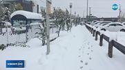 40-сантиметрова снежна покривка в Канада