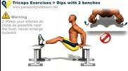 Бодибилдинг упражнения - Разгъване на Трицепс от пейка