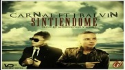 Превод! Carnal ft. J Balvin - Sintiendome (prod. By Musicologo Y Menes) New 2011