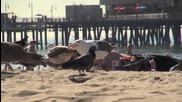 Нападнати на плажа от птици. - Скрита камера - Смях