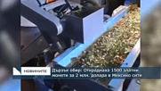 Дързък обир: Откраднаха 1500 златни монети за 2 млн. долара от Мексико сити