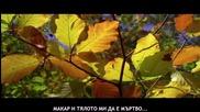 Гръцка балада [превод] Любов е... / Notis Xristodoulou - Erotas einai