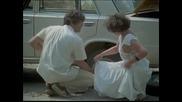 Дами канят - Български игрален филм 1980