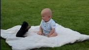 Йоркширски териер срещу бебе -детмач