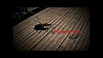 Tek One - Bug (seriously hard dubstep)