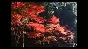 A Short Look At Japan