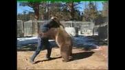 Мечка атакува мъж