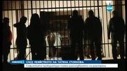 СГП ще разследва убийството на Татяна Стоянова
