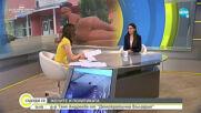 """""""Жените и политиката"""": Д-р Таня Андреева от """"Демократична България"""""""