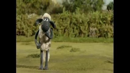 Shaun The Sheep Epizod 2