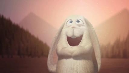 Зарибения заек - Анимация