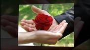 Дует Шик - Пет червени рози
