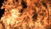 Sevaha i Juzni Vetar - Ja sam vatra gasi me