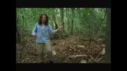 Уникално*птица танцува като Майкъл Джексън