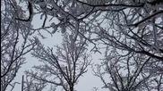 Природен парк Небесните Пасбища с.осиковица през зимата