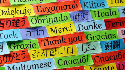 15 Интересни факта за езиците по света