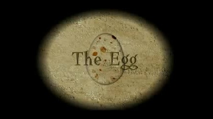 The Egg 3d