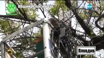 Господари на ефира отново помага за спасяването на живно в беда - Гоподари на ефира (29.07.2015)