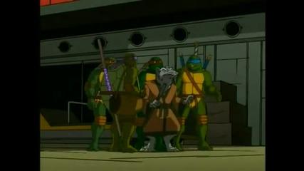 kostenurkite ninja epizod 21