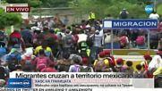 Мексико спря кервана от имигранти по искане на Тръмп