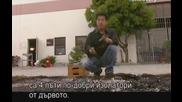 Ловци на митове - Нестинарство - S06e13 - с Бг превод