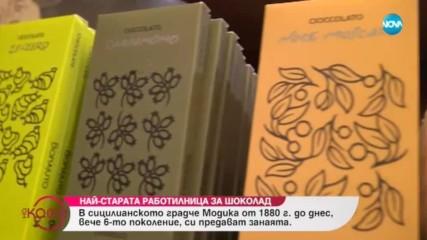 Коя е най-старата работилница за шоколад в Модика - ''На кафе'' (21.01.2019)