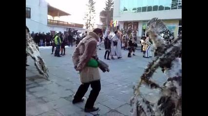 23.01.2010г. Кукери Община Брензик