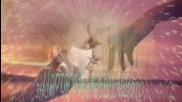 Celine Dion - I Surrender / превод /