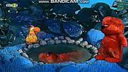 Джунглата разказва: Как папагалът надхитрил лъва (по мотиви от африкански приказки) (2001)