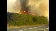 Пожарите В България