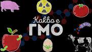 Знаете ли какво е ГМО наистина?!