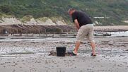 UK: Coastal erosion reveals 110 mil y/o dinosaur footprints on Kent beach