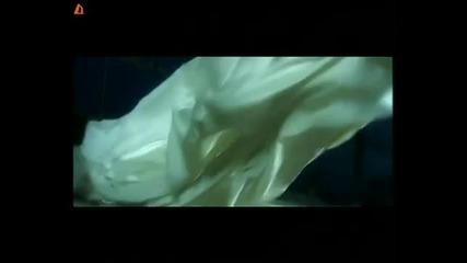 Aneliq - Kak predade lubovta -
