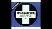 Dj Sakin _ Friends - Nomansland (david_s Song) (lange Remix)